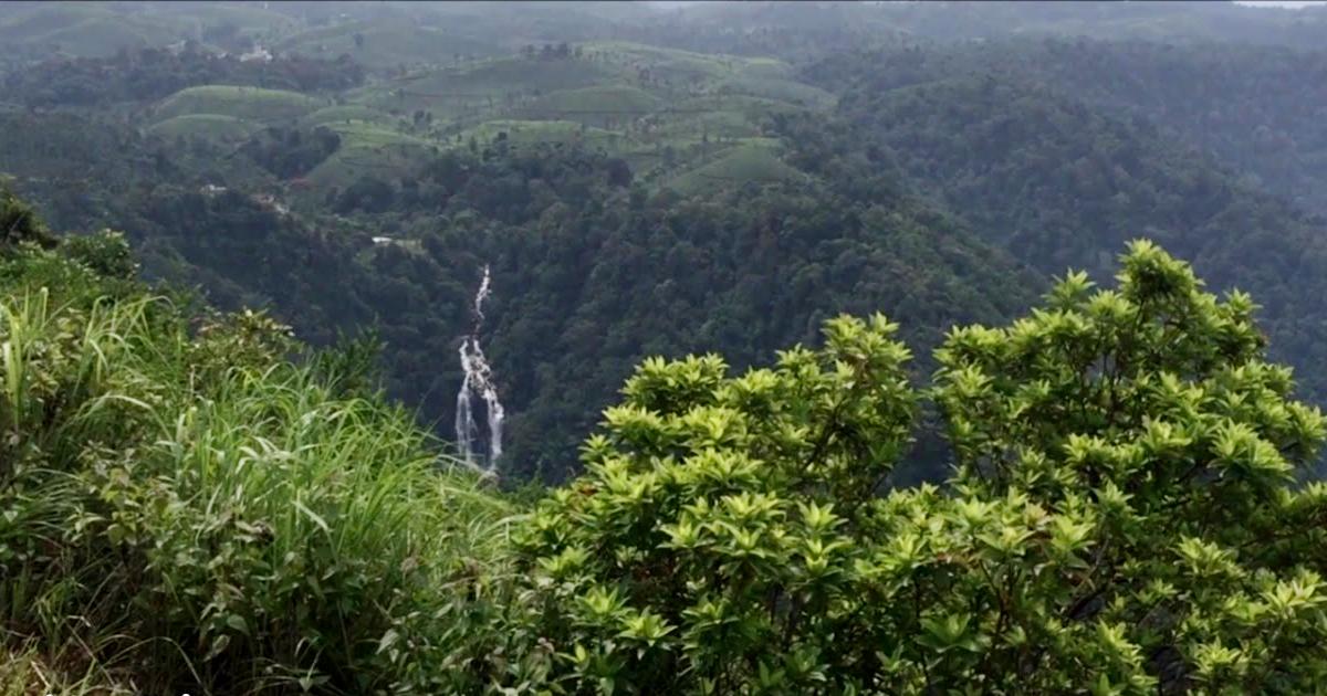 നീലിമല view point
